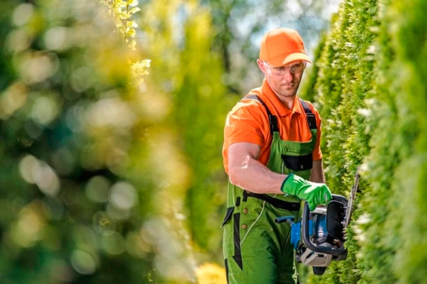 Un buen jardinero