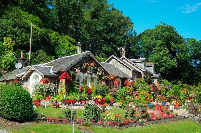 mantener el jardín en la época invernal