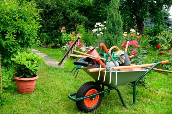 mantener un jardín perfecto
